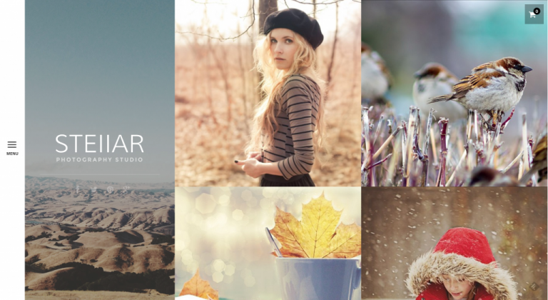 20+ Best Premium Photography WordPress Themes
